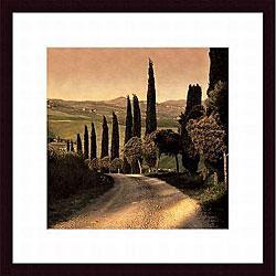 Elizabeth Carmel 'Country Lane, Tuscany' Wood Framed Art
