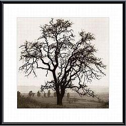 Alan Blaustein 'Country Oak Tree' Metal Framed Art