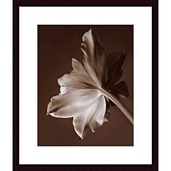 Rebecca Swanson 'Moonglow Tulip' Framed Art