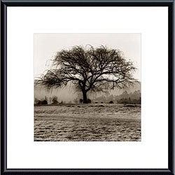 Alan Blaustein 'Willow Tree' Metal Framed Art Print