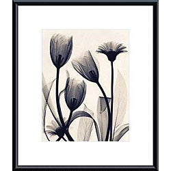 Steven Meyers 'Tulip and Daisy' Metal Framed Art Print