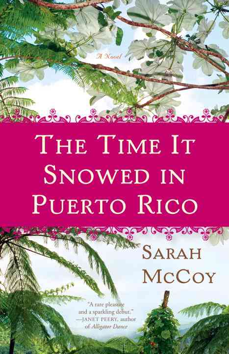 The Time It Snowed in Puerto Rico (Paperback)