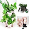 Culinary Herb Garden Starter Kit/ Mini Garden Stacker Planter