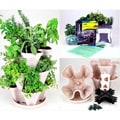 Indoor Medicinal Herb Garden Starter Kit