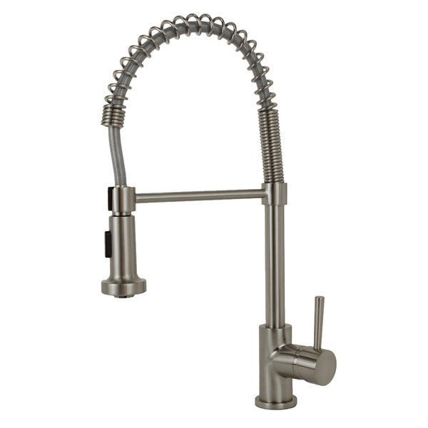 Fontaine Brushed Nickel Residential Spring Kitchen Faucet