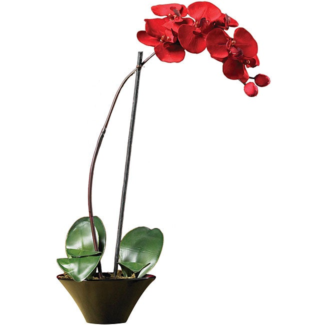 Holiday faux phalaenopsis orchid arrangement Christmas orchid arrangements