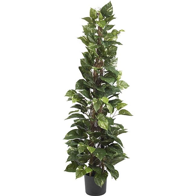 Pothos 63-inch Climbing Silk Plant