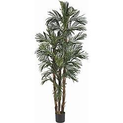 Robellini 6-foott Palm Silk Tree