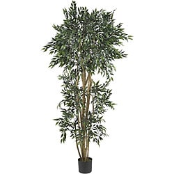 Green Ash 6-foot Silk Tree