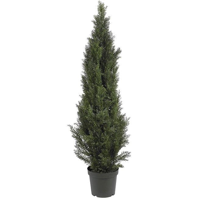 Mini 5-foot Indoor/ Outdoor Cedar Pine Tree