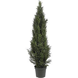 Mini 5-foot Indoor/ Outdoor Cedar Pine Tree