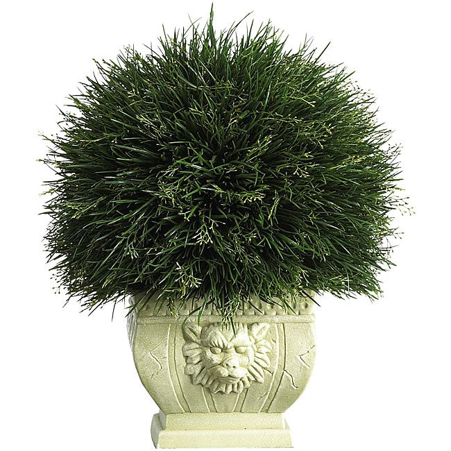 Potted Acorus Grass with White Vase