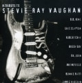 Stevie Ray Vaughn - A Tribute to Stevie Ray Vaughan