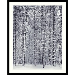 Ansel Adams 'Pine Forest in the Snow, Yosemite National Park' Framed Art Print