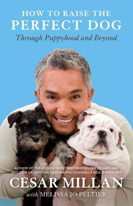 How to Raise the Perfect Dog: Through Puppyhood and Beyond (Paperback)