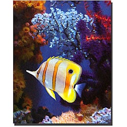Vangsgard 'Longnose Butterfly Fish' Gallery-wrapped Canvas Art