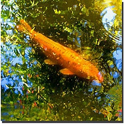 Amy Vangsgard 'Koi Fish I' Gallery-wrapped Canvas Art