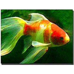 Amy Vangsgard 'Goldfish' Gallery-wrapped Canvas Art