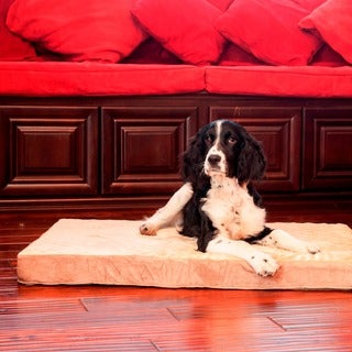 Orthopedic Memory Foam Rectangle Dog Bed