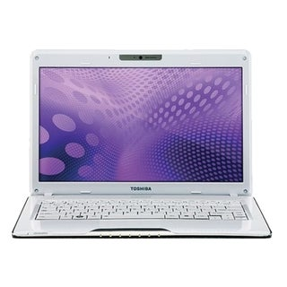 "Toshiba Satellite T135D-S1325WH 13.3"" LED (TruBrite) Notebook - AMD T"