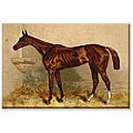 Alfred Conbould 'Book of the Horse' Gallery-wrapped Canvas Art