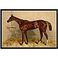 'Book of the Horse' Framed Art Print