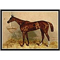 Alfred Conbould 'Book of the Horse' Framed Art Print