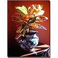 Amy Vangsgard 'Crotons in Talavera Pot' Canvas Art