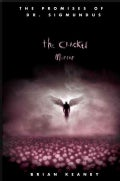 The Cracked Mirror (Paperback)
