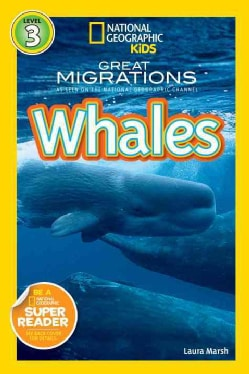 Whales (Paperback)