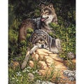 Dimensions 'Wild and Free Wolves' Paint By Number Kit (16 x 20)