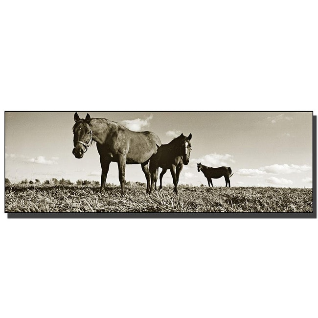 Preston 'The Horses' Gallery-wrapped Art