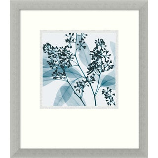 Steven N. Meyers 'Eucalyptus II' Mini Framed Art Print