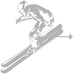 Skier Sudden Shadows Wall Decal