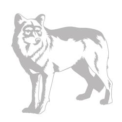 Wolf Sudden Shadows Wall Decal