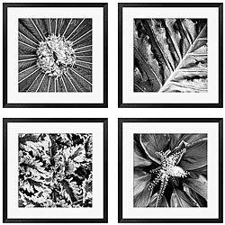 Michael Joseph 'Pollinator Series' 4-piece Framed Art Set
