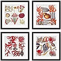 Leslie Saris 'Marine Array' 4-piece Framed Art Set