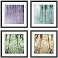 Sara Abbott 'Natural Expression' 4-piece Framed Art Set