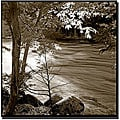 Preston 'Yosemite II' Gallery-wrapped Canvas Art