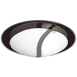 Energy Star 2-light Frosted Glass Flush Mount Light Fixture