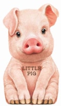 Little Pig (Board book)