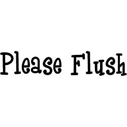 'Please Flush' Vinyl Wall Art Quote