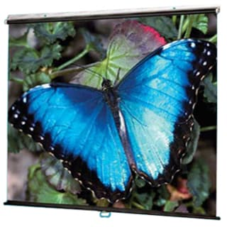 Draper V Screen Manual Projection Screen