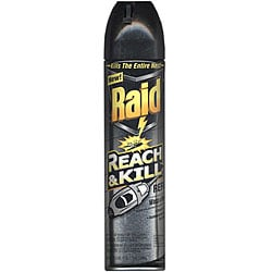 Raid 17.5-oz Reach and Kill Wasp and Hornet Killer Refill