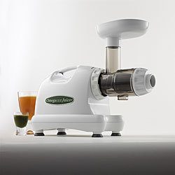 Omega J8004 Nutrition Center Commercial Masticating Juicer