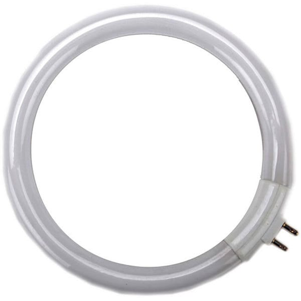Naturalight 12-watt Circular Fluorescent Replacement Tube