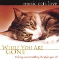 BRADLEY JOSEPH - MUSIC CATS LOVE: WHILE YOU ARE GONE