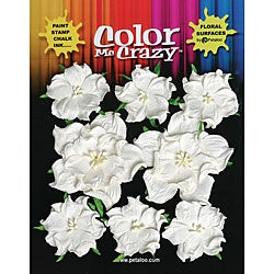 Petaloo Color Me Crazy Wild Rose Flowers (Pack of 8)