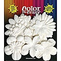 Color Me Crazy Flowers (Pack of 60)