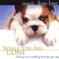 BRADLEY JOSEPH - MUSIC DOGS LOVE: WHILE YOU ARE GONE